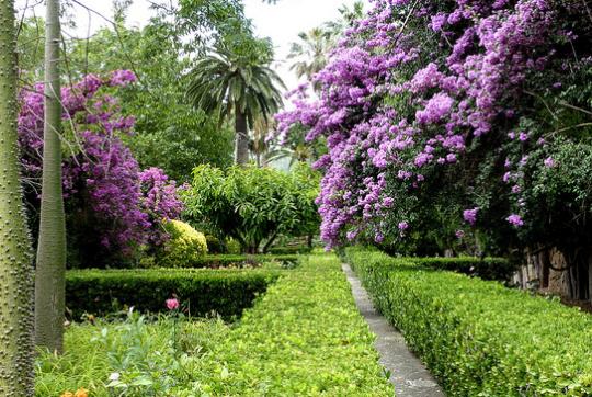I parchi e giardini botanici di Maiorca