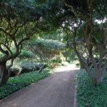 Giardini reali di Marivent